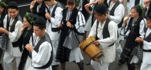 Vaideeni-festival-685x320