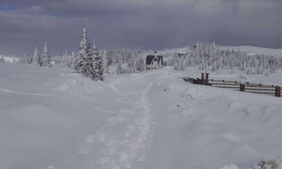 Ieri soare … azi … ninge!!!