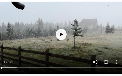 Vine iarna ???