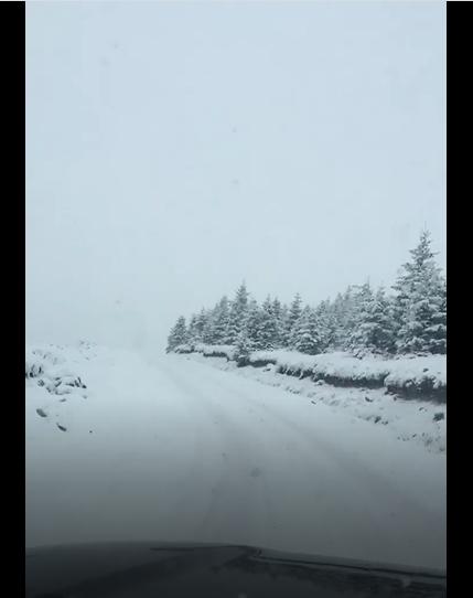 Let it Snow!!! Spre Muntele Alb la intrare in Varful lui Roman