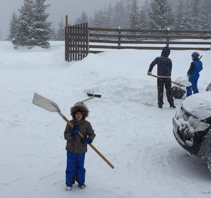 Distractii de iarna!!!