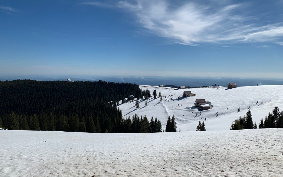 Totul alb la… Muntele Alb