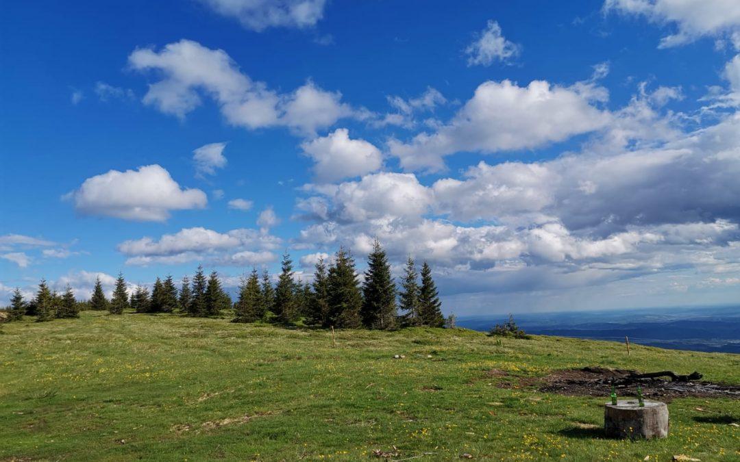 Iunie de vara la Muntele Alb
